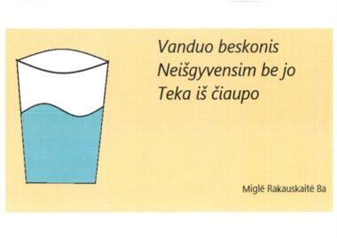 Miglė Rakauskaitė, 8 kl., SPECIALUSIS PRIZAS